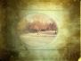 iPhoneografi - Natur